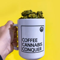 COFFEE MUGS: HIGHEST BITCH • COFFEE CANNABIS CONQUER