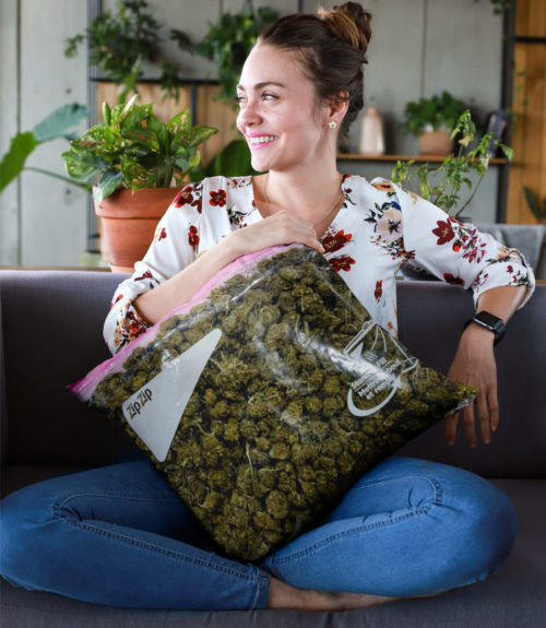just get high_all over throw pillow_stash bag_zip zip