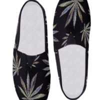CANVAS SLIP-ONS: PAINTED LADIES