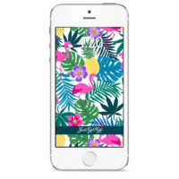 iPHONE SCREENSAVER: PINEAPPLE EXPRESS PRINT