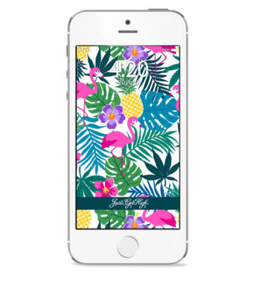 just get high_iphone_pineapple express print